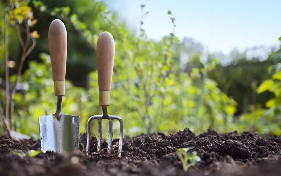 Осінні роботи на городі