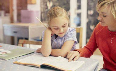 Про індивідуальне навчання для школярів в Україні 2019-2020