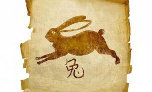Гороскоп на 2022 рік для Кролика (Кота)