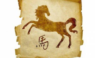 Гороскоп на 2022 рік для Коня