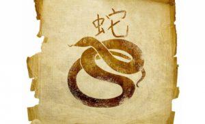 Гороскоп на 2022 рік для Змії